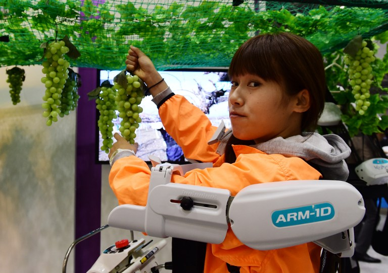 "An employee of Japan's agriculture machinery company Kubota demonstrates grape picking with the company's latest arm assisted suit ""Raku Vest"" at the annual International Robot Exhibition in Tokyo on December 2, 2015. Some 450 companies and organisations displayed their latest robots and 5,000 people were expecting to visit a four-day event. AFP PHOTO / Yoshikazu TSUNO / AFP / YOSHIKAZU TSUNO"